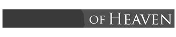 Projektowanie stron www - najlepsza agencja interaktywna